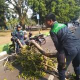Poltam Sigap Tolong  Wanita yang  Tertimpa Dahan Pohon, Korban Bisa Klaim Asuransi