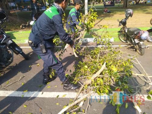 Petugas Disperkim yang menyingkirkan dahan pohon (Disperkim)