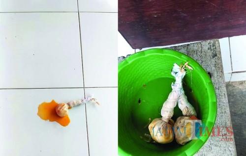 Bungkusan telor busuk diikat seperti pocong yang ditemukan di teras cakades Kesambirampak (Foto Sony Haryono / Situbondo TIMES)