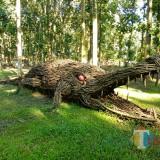 Patung buaya berbahan kayu jati di wisata Jati Park