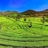 Ini Dia Tempat Wisata di Bandung yang Paling Hits