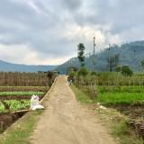 Salah satu akses jalan pertanian di Kota Batu. (Foto: Irsya Richa/MalangTIMES)
