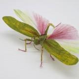 Tampilan serangga replika yang mirip dengan aslinya. (Foto: Istimewa)