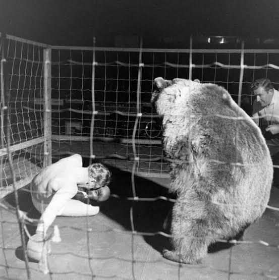 Pertandingan tinju antara manusia dan beruang yang sempat populer di abad pertengahan. (vice)