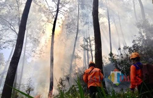 Kebakaran hutan di lerengGunung Panderman, Kota Batu beberapa saat lalu.