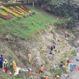 Pasukan kuning DLH Kota Malang saat melakukan pembersihan Sungai Brantas di UMM. (Arifina Cahyanti Firdausi/MalangTIMES)