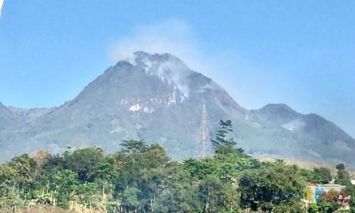 Kondisi kebakaran lahan hutan di area  Gunung Panderman Kota Batu, Senin (22/7/2019). (Foto: Irsya Richa/MalangTIMES)