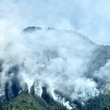 Kondisi kebakaran lahan hutan di area lereng Gunung Panderman Kota Batu, Senin (22/7/2019).