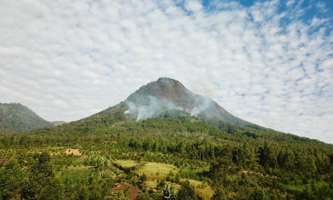 Kondisi kebakaran hutan Gunung Panderman,Selasa (23/7/2019).