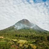 Kondisi kebakaran hutan Gunung Panderman,�Selasa (23/7/2019).