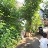 Gatot ketua RT 4 RW  15, Kelurahan Mangunharjo, Kecamatan Mayangan, Kota Probolinggo, menunjuk lokasi kera  (Agus Salam/Jatim TIMES)