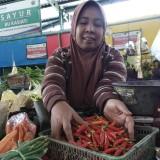 Sepekan Bertahan di Angka Rp 80 Ribu, Harga Cabai Rawan Picu Inflasi Kota Malang