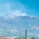 17 Orang Berhasil Dievakuasi Saat Kebakaran Hutan Gunung Arjuna