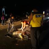 Dalam Dua Hari, Satu Nyawa Melayang di Jalan Raya Kabupaten Malang