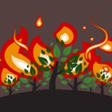 Kebakaran Melanda Hutan Sekitar Gunung Ijen