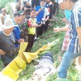 Dihantam r KA Probowangi, Mr. X Jatuh di Jembatan Tambong Tewas dengan Kepala Pecah
