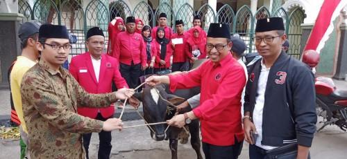 Idul Adha, DPC PDIP Kota Malang Serahkan Satu Ekor Sapi Kurban ke Masjid Agung Jami'
