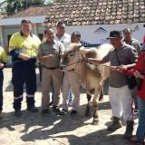 Warga Lima Desa di Pesanggaran Dapat Bantuan 68 Hewan Qurban