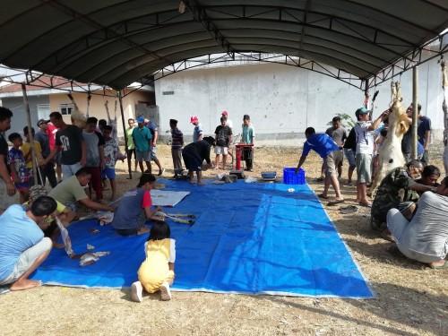 Pelaksanan qurban di hari idul adha yang masih banyak daging hewannya dibungkus kantong plastik (Nana)