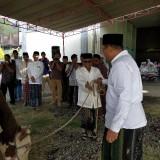 Korpri Pemkab Situbondo Kurban  7 Sapi dan 28 Kambing, Dikemas Pakai Besek