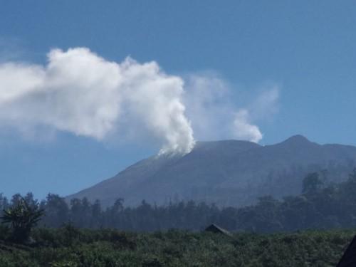 Gunung Arjuna saat kebakaran hutan beberapa saat lalu.