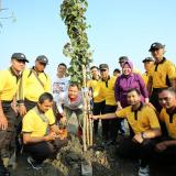 Tanam 15 Ribu Pohon Mangrove, Surabaya Canangkan Kebun Raya Mangrove Pertama di Dunia