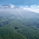 Pemkot Batu Gerak Cepat  Revitalisasi HutanTerbakar Libatkan Kodam V Brawijaya