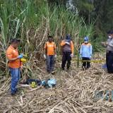 Perkembangan Penemuan Mayat di Bululawang, Dugaan Sementara adalah Kasus Pembunuhan
