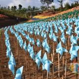 Bumi Kitiran, Lahan Kebun Jeruk Jadi Destinasi Cantik Berhias Ribuan Baling-Baling Plastik
