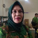 Rudiati Sugiarsih, Kabid Pemasaran dan Kerjasama Dinas Pariwisata Pemkab Jember (foto : Moh. Ali Makrus / Jatim TIMES)