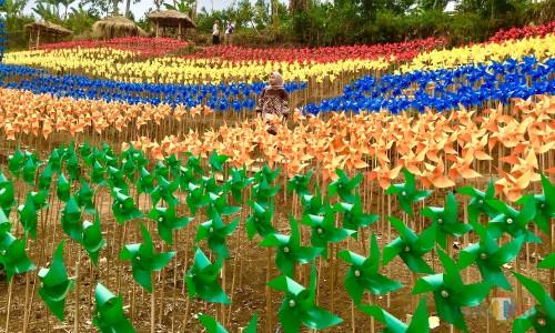 Sukaji Widiantoko, 7 Tahun Gagal jadi Petani Jeruk, Kini Kembangkan Bumi Kitir yang Ngehits