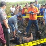Seorang Petani Tebu di Jombang Tewas Terbakar Saat Membakar Daun Sisa Panen