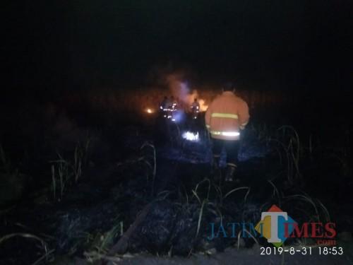 Pemadam kebakaran saat melakukan pemadaman di lahan tebu desa Bendilwungu / Foto : Istimewa / Tulungagung TIMES