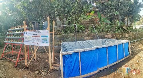 Pertanian dengan sistem aquaponik dari mahasisa KKN Unikama 2019 (Unikama for MalangTIMES)