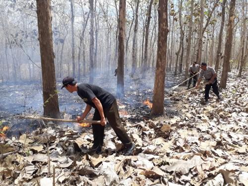 Petugas gabungan melakukan pemadaman api di area hutan produksi Karetan