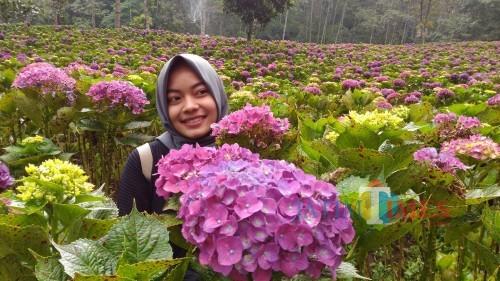 Salah satu pengunjung saat swafoto di Bon 15,DusunWonorejo, Desa Tulungrejo, Kecamatan Bumiaji.