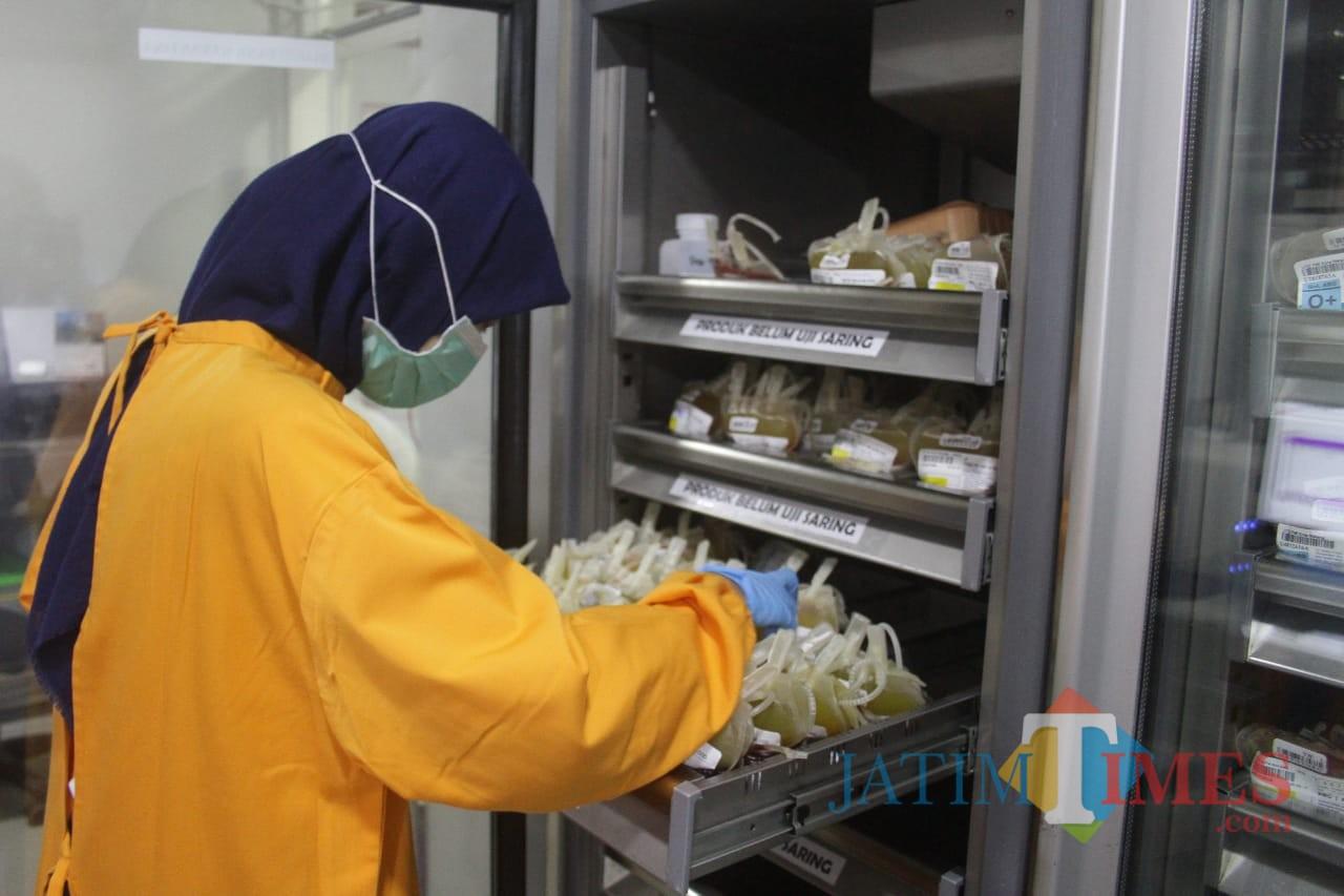 Petugas tengah melakukan pemeriksaan darah hasil donor di ruang pendingin. (Foto: Nurlayla Ratri/MalangTIMES)