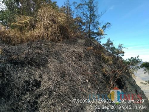 Kondisi lahan bekas terbakar di wilayah Taman Nasional Bromo Tengger Semeru. (Foto: Dok Balai Besar TNBTS)