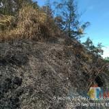 Masih Berasap, Luasan Karhutla Taman Nasional Bromo Tengger Semeru Capai 17,9 Hektare