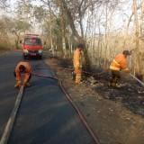 Selama 2 Bulan, Hutan di Tulungagung Terbakar 7 Kali