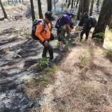 Lagi, Kawasan Hutan Gunung Arjuno Terbakar