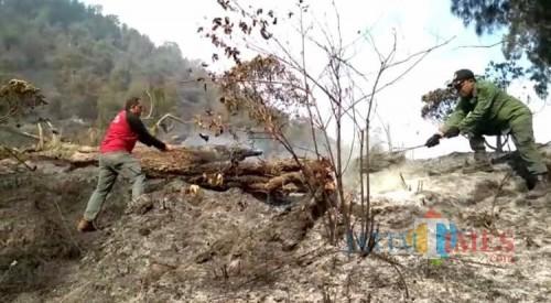 Para petugas gabungan tengah melakukan pemadaman kebakaran lahan dan hutan di Gunung Semeru. (Foto: Dokumen BB TNBTS)
