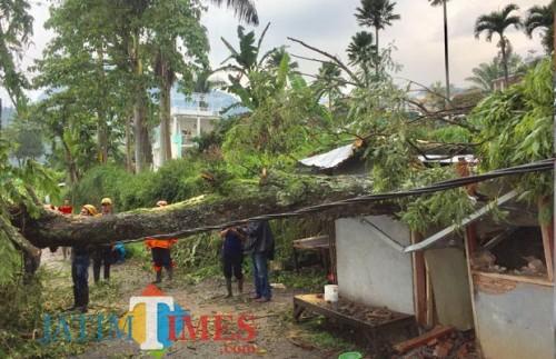 Bencana angin puting beliung saat melanda Kelurahan Songgokerto. (Foto: Irsya Richa/MalangTIMES)
