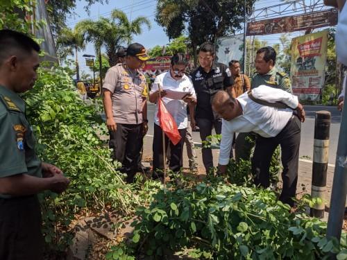 Kapolres Tulungagung, AKBP Eva Guna Pandia  bersama tim BKSDA memantau langsung lokasi pembalakan Sonokeling (ist).