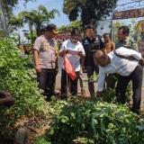 Usut Pembalakan Sonokeling, Kapolres Turun Langsung Pantau Lokasi
