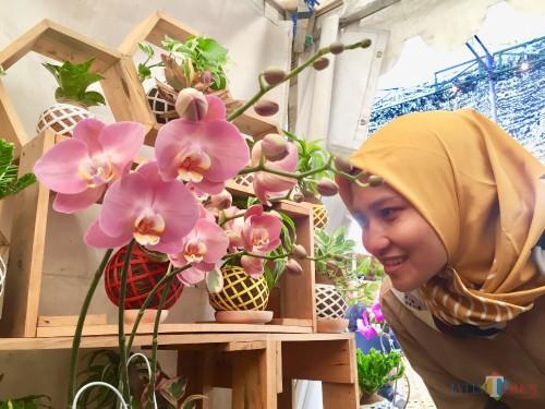 Salah satu spesies anggrek yang memukau pengunjung dalam Shining Orchid Week 2019 di Balai Kota Among Tani, Senin (7/10/2019). (Foto: Irsya Richa/MalangTIMES)
