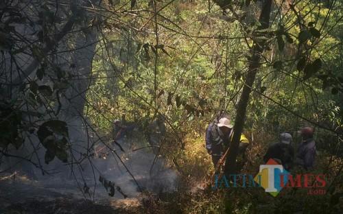 Petugas gabungan melakukan pemadaman titik api kebakaran hutan di Gunung Semeru. (Foto: Dokumen TNBTS)