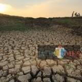 Kekeringan, 9 Desa di Tulungagung Rutin Dapat Pasokan Air Bersih