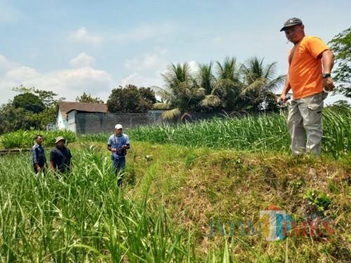 Tim dari BPCB Jatim saat penggalian candi di Kel Gedog Kota Blitar.(Foto : Malik Naharul/BlitarTIMES)
