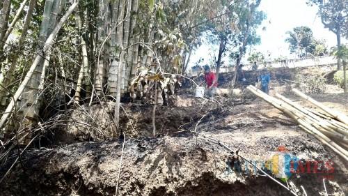 Area lahan bambu di Jalan Pattimura RT 05 RW 07 Kelurahan Temas Kecamatan Batu, Kamis (10/10/2019). (Foto: istimewa)